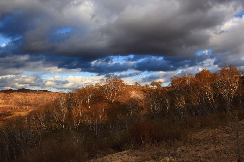 Spektakularna Wewnętrzna Mongolia obszaru trawiastego sceneria zdjęcie royalty free