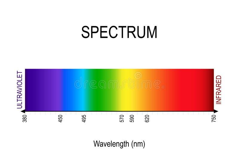 spektrum sichtbares Licht, Infrarot und ultraviolettes Elektromagnetische Strahlung lizenzfreie abbildung