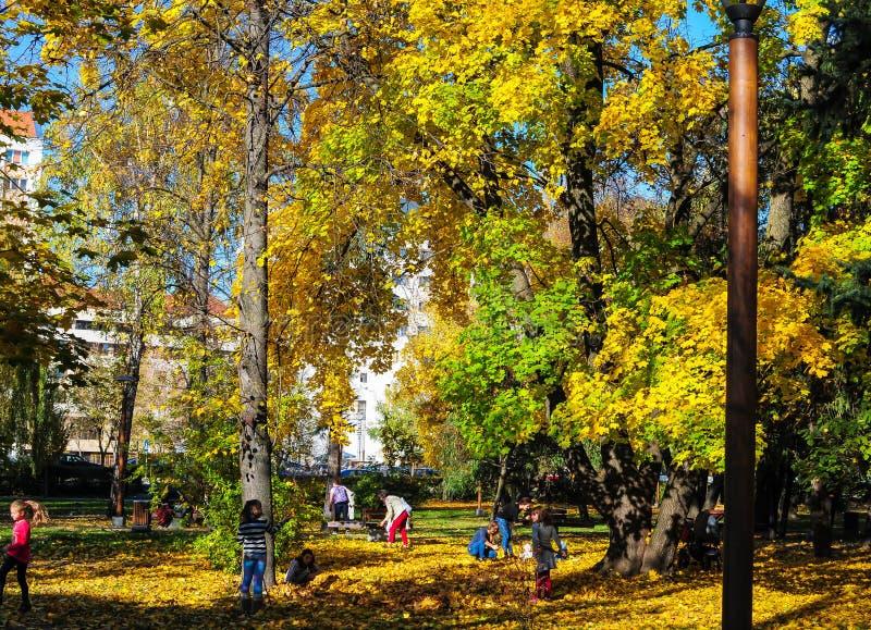Spela barn i parkera på en ljus höstdag royaltyfri fotografi