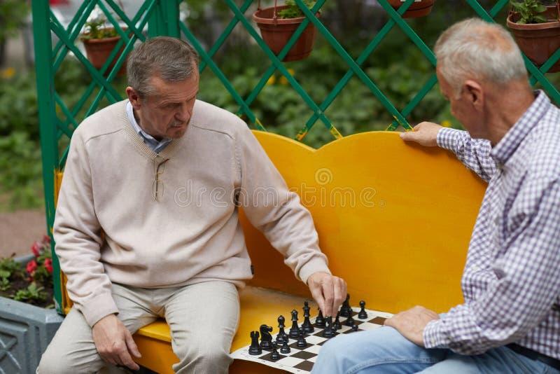 Spela schack på trädgården arkivbild