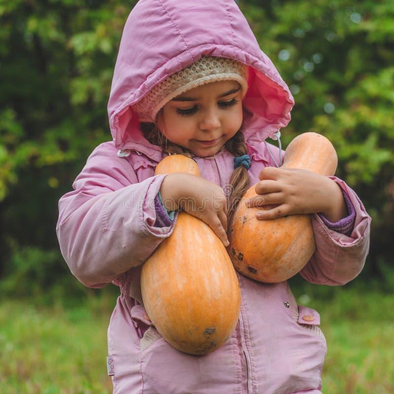 Spela utomhus den gulliga lilla flickan som rymmer en pumpa Skörd av pumpor, höst i trädgården, den älskvärda flickan och stora p arkivbilder