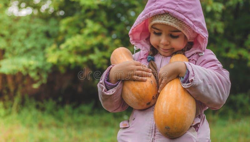 Spela utomhus den gulliga lilla flickan som rymmer en pumpa Skörd av pumpor, höst i trädgården, den älskvärda flickan och stora p royaltyfri bild