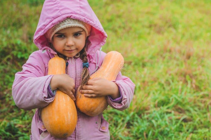 Spela utomhus den gulliga lilla flickan som rymmer en pumpa Skörd av pumpor, höst i trädgården, den älskvärda flickan och stora p royaltyfria foton
