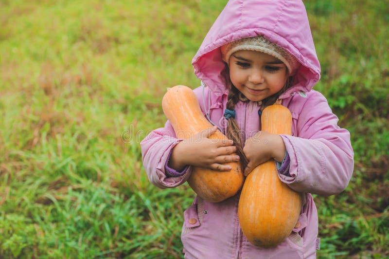 Spela utomhus den gulliga lilla flickan som rymmer en pumpa Skörd av pumpor, höst i trädgården, den älskvärda flickan och stora p royaltyfria bilder