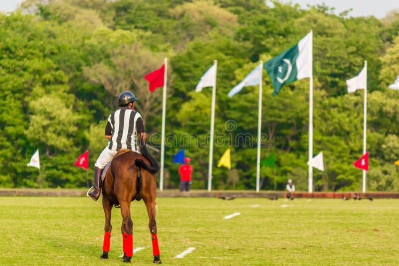 Spelare i handling under en polomatch royaltyfria foton