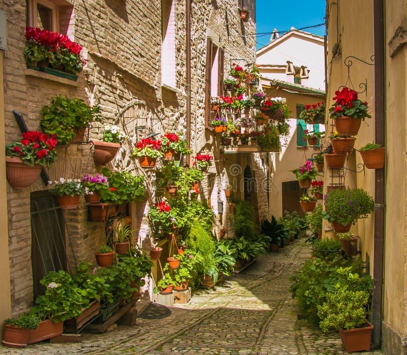 Spello Cidade medieval em Itália central fotos de stock