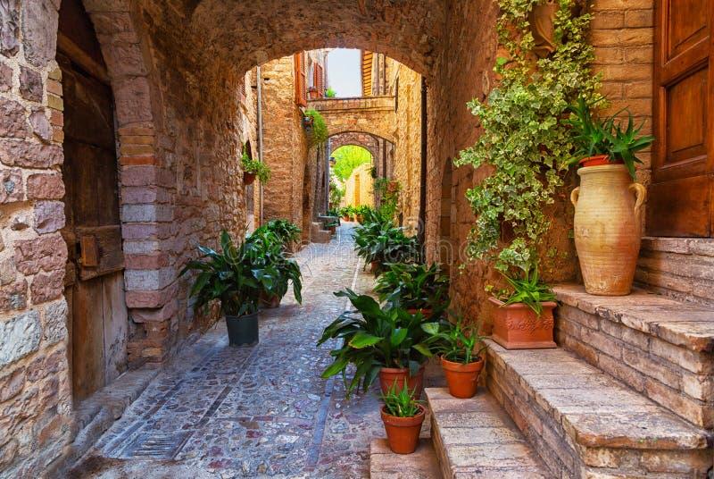 Spello, Umbrië, Italië stock afbeelding
