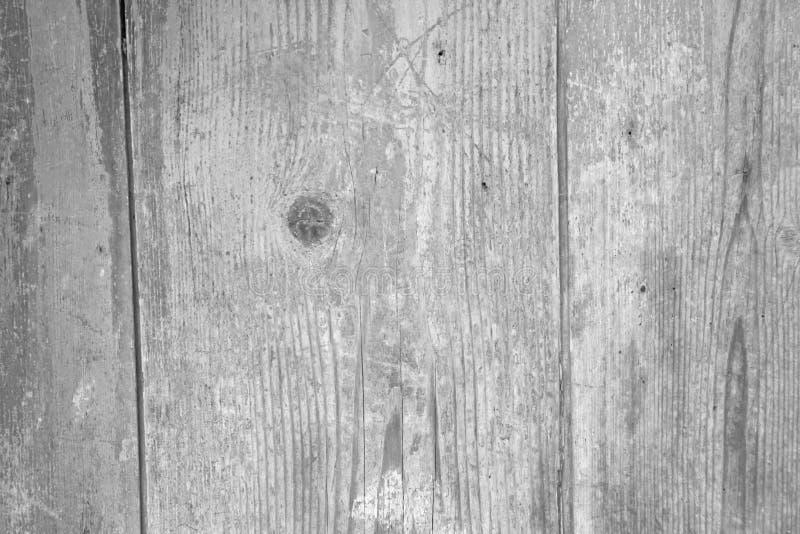 spelrum med lampa Gray Background från det naturliga trädet Trä texturerar Tom bakgrund för design, design och mallar fotografering för bildbyråer