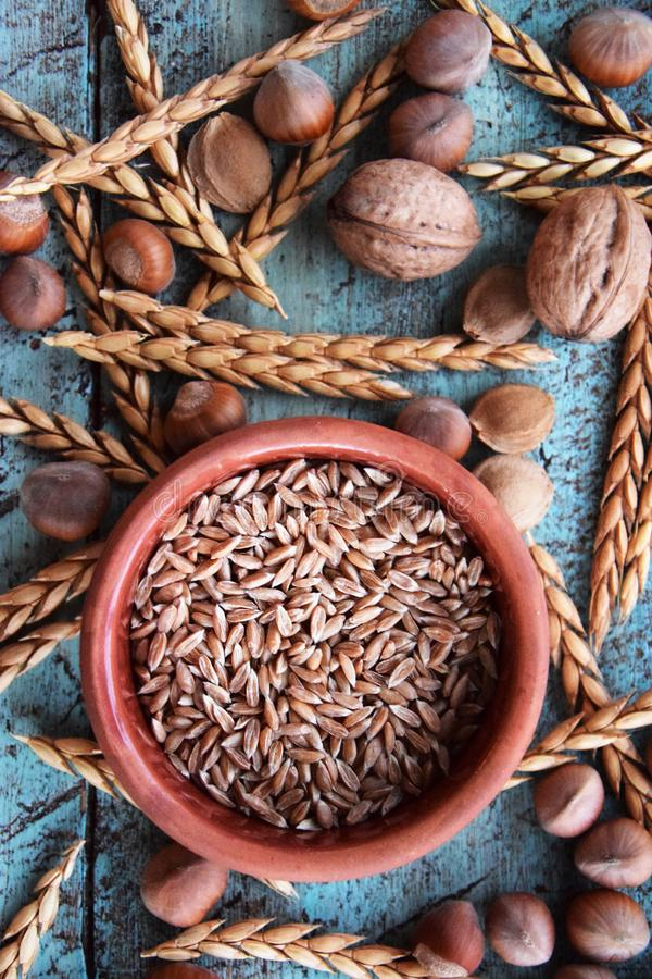 Spelt grain arrangement in pottery bowl stock image