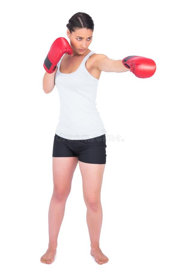 Spenslig modell med att stansa för boxninghandskar royaltyfria foton