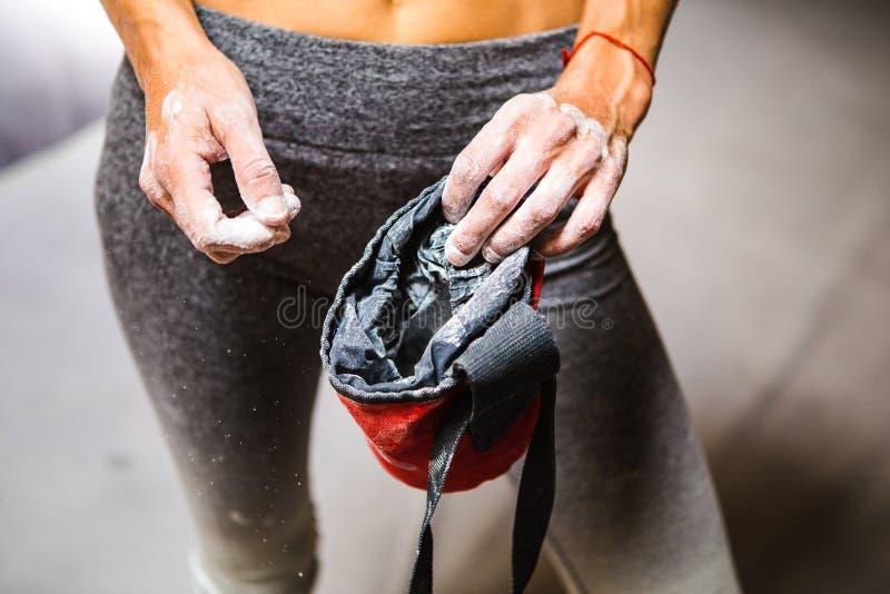 Spensligt vagga klättraren rymmer en kritapåse royaltyfria foton