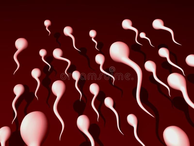 Sperm. Illustration of a sperm run vector illustration