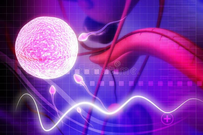 Sperm. Digital illustration of sperm in colour background royalty free illustration