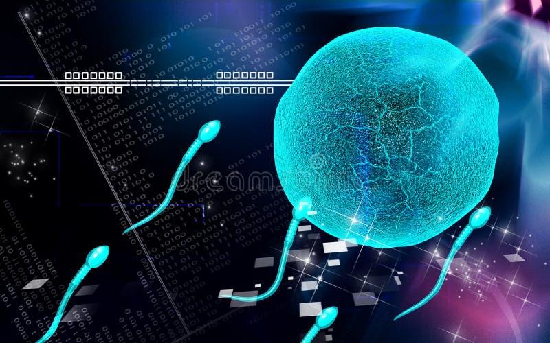 Sperm vector illustration
