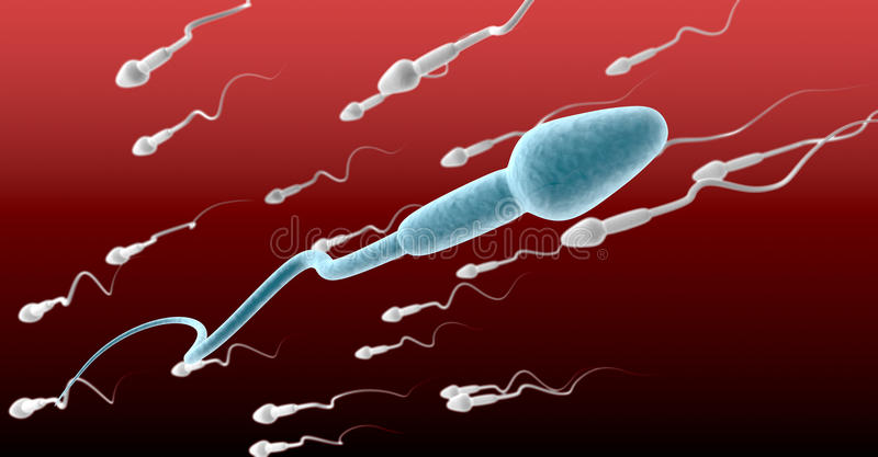 Sperm Cell Male Against The Flow stock illustration