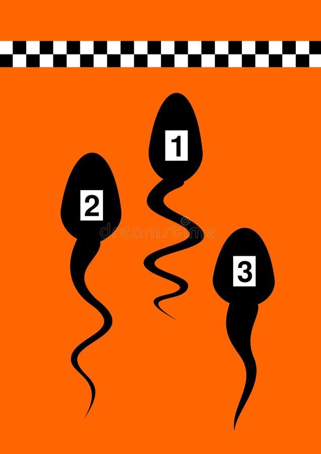 spermi illustrazione vettoriale