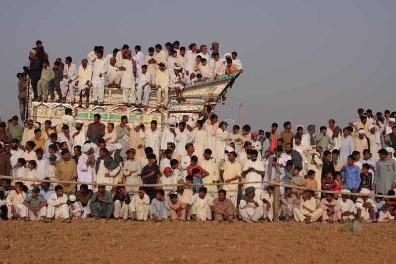 Spettatori alla corsa tradizionale del toro fotografia stock