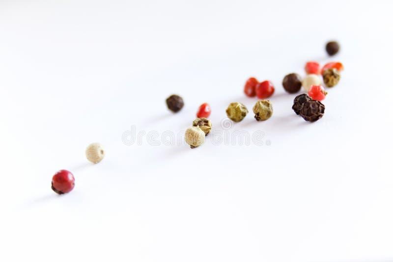 Spezia del cereale di pepe fotografia stock libera da diritti