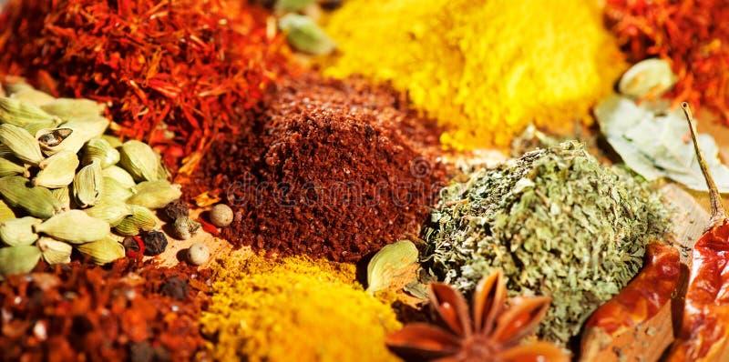 spezia Varie spezie indiane e fondo variopinto delle erbe Assortimento dei condimenti fotografie stock libere da diritti