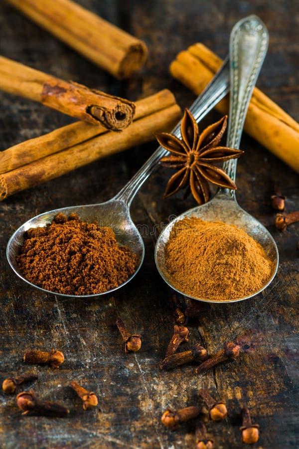 Spezie - cannella e chiodi di garofano fotografia stock