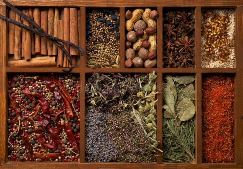 Spezie in casella di legno fotografie stock libere da diritti