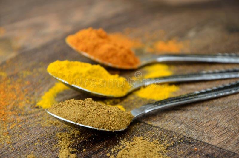 Spezie Colourful del curry in cucchiai d'argento su legno scuro fotografia stock libera da diritti