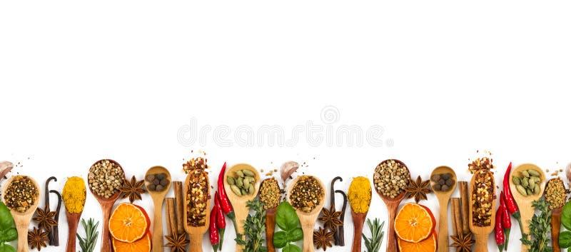 Spezie, condimenti differenti ed erbe isolati su bianco fotografia stock libera da diritti