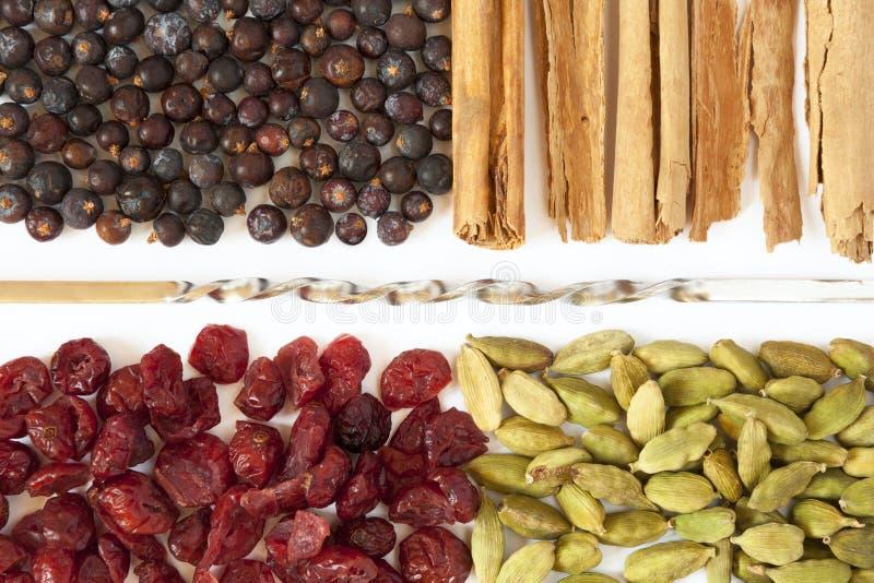 Spezie e bacche per il tonico ed il cucchiaio del gin fotografie stock
