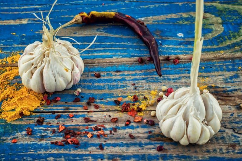 Download Spezie Piccanti Del Condimento Fotografia Stock - Immagine di chili, fresco: 55360500