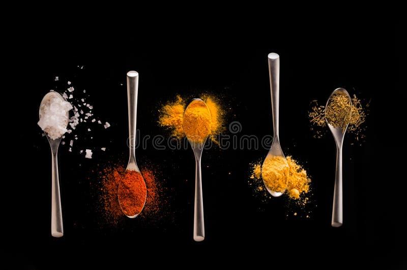 Spezie sui cucchiai immagini stock