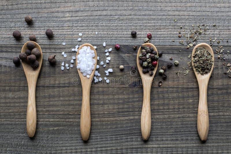 Spezie sui cucchiai di legno immagini stock libere da diritti