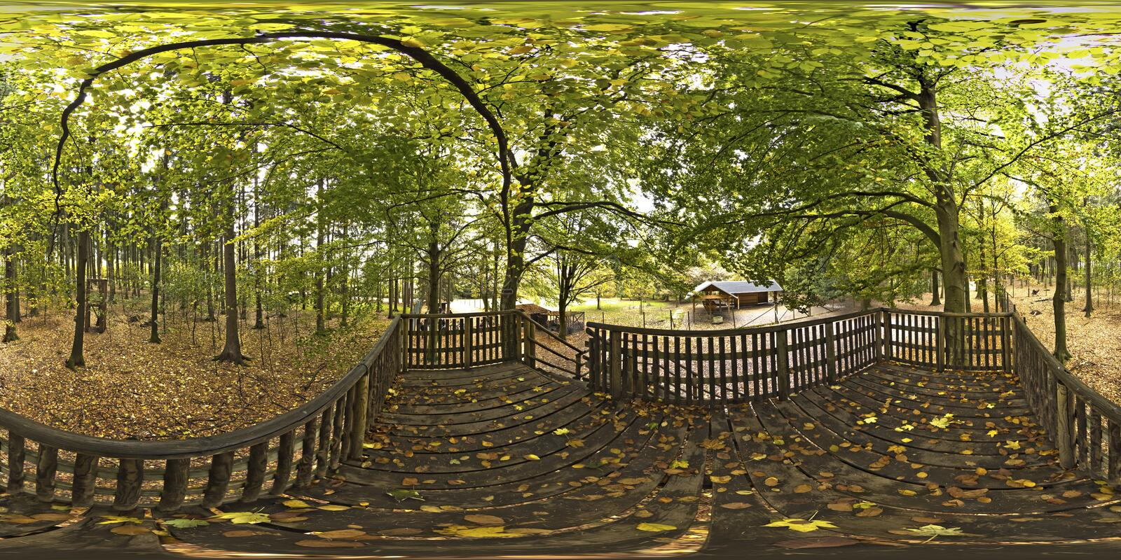 Spherical panorama 360 degrees in the Forest stock images