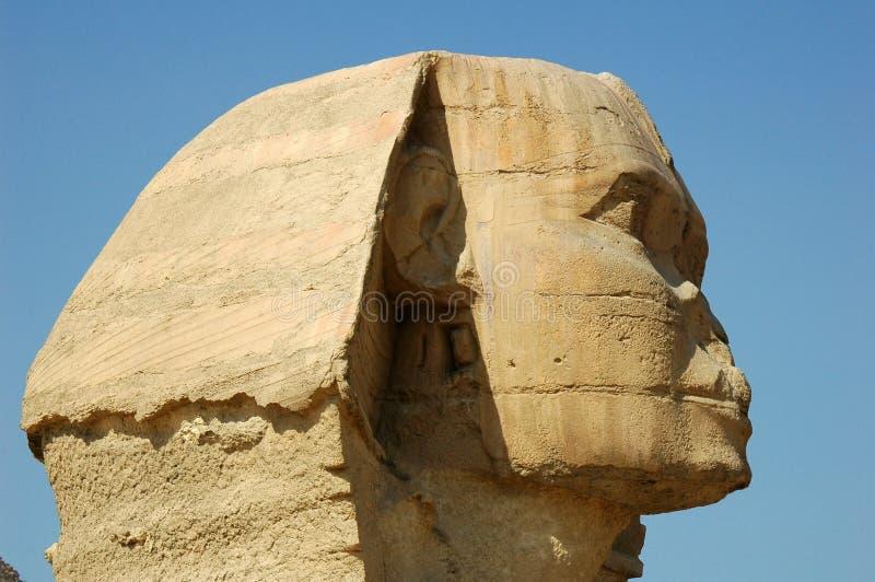 Sphinx fotos de stock royalty free