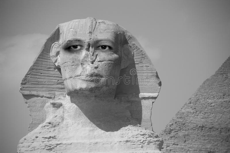 Sphinx abstrato com os olhos que olham no futuro foto de stock royalty free