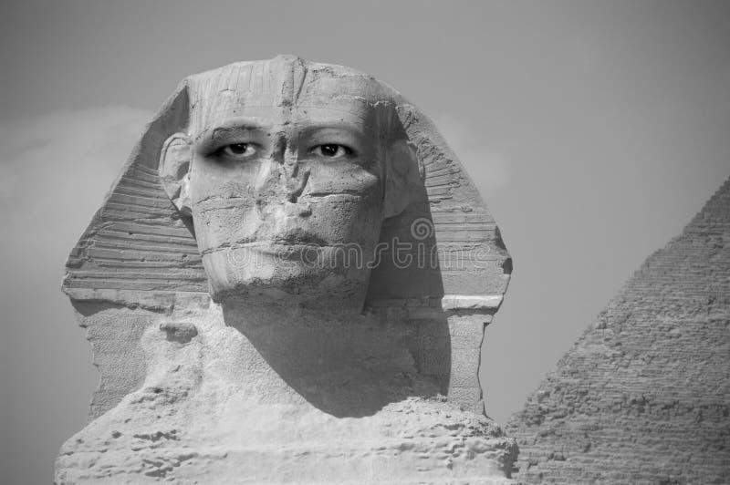 Sphinx astratto con gli occhi che esaminano il futuro fotografia stock libera da diritti