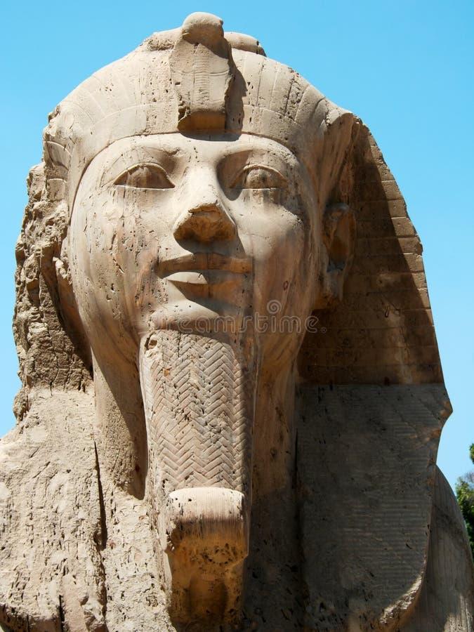 Sphinx d'albâtre à Memphis photos libres de droits