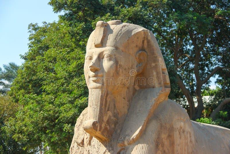 Sphinx de Memphis images libres de droits
