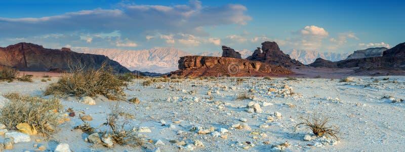 Sphinx of the desert, panoramic view stock photos
