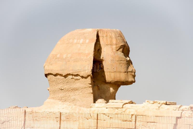 Sphinx Giza, Αίγυπτος στοκ φωτογραφία με δικαίωμα ελεύθερης χρήσης