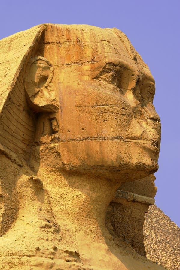 Sphinx Kairo Ägypten stockbild
