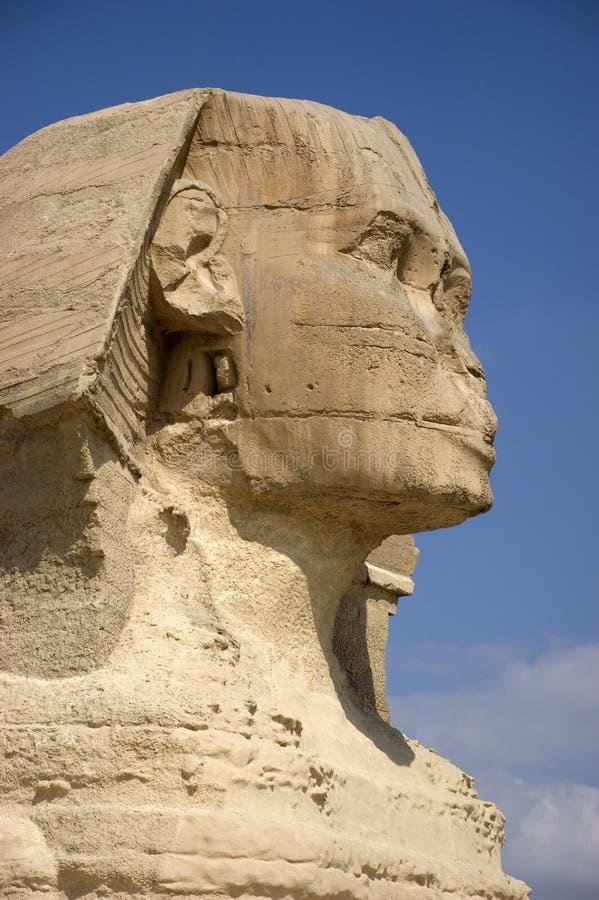 Sphinx Sideview Nahaufnahme lizenzfreie stockfotografie