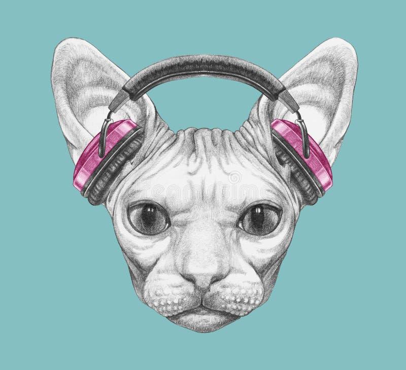 Sphynx猫画象与耳机的 拉长的表面现有量例证s妇女 皇族释放例证