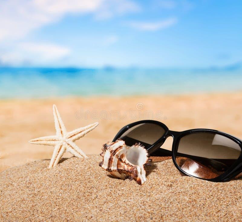 Spiagge fotografia stock libera da diritti