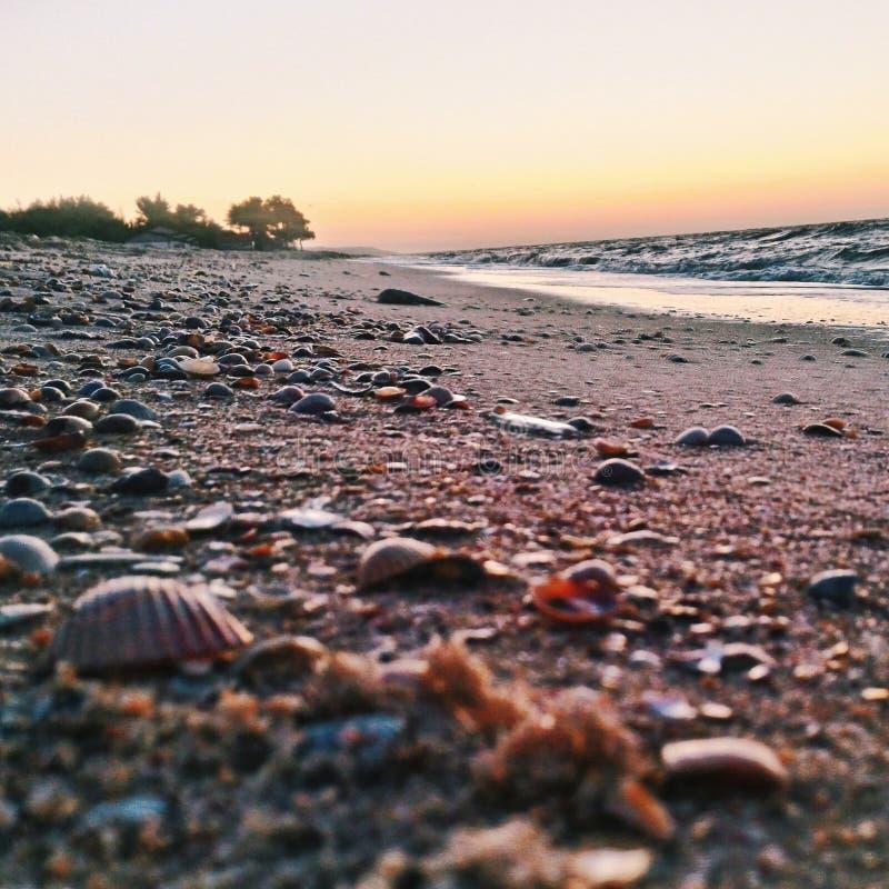 Spiaggia, fotografia stock