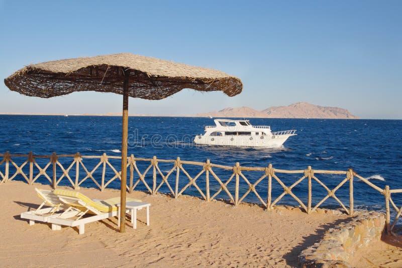 Spiaggia al Mar Rosso, Sharm El-Sheikh, Egitto immagini stock libere da diritti