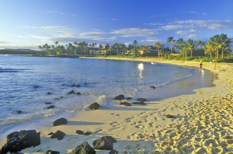 Spiaggia all'hotel di località di soggiorno della baia di Hanapepe, Kauai, Hawai immagini stock libere da diritti