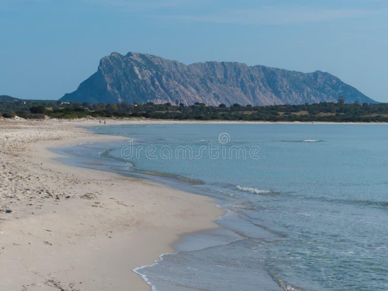Spiaggia bianca soleggiata dell'Italia con la vista dell'isola immagine stock libera da diritti