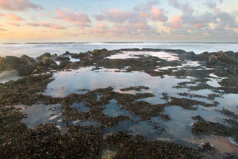 Spiaggia in Blankenberge, Belgio fotografia stock libera da diritti
