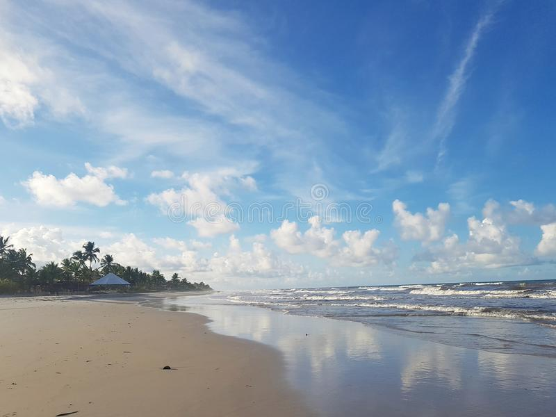 Spiaggia brasiliana royaltyfria bilder