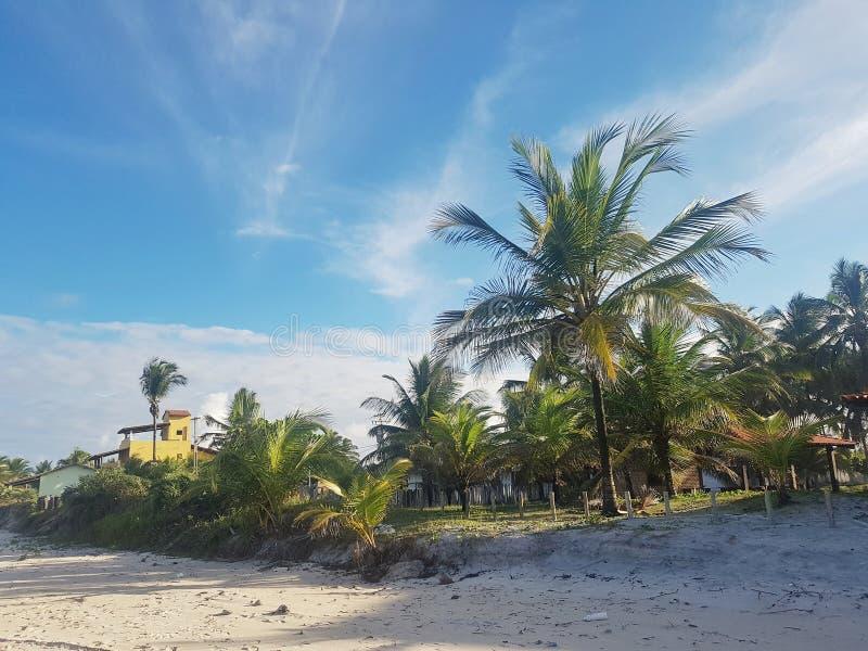 Spiaggia brasiliana arkivfoto
